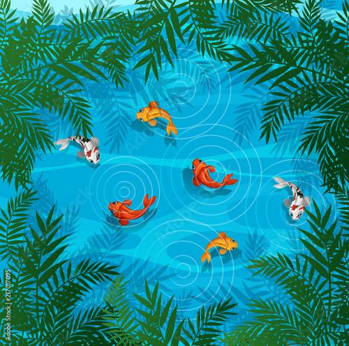 Fotobehang Kids Koi fish in a pond