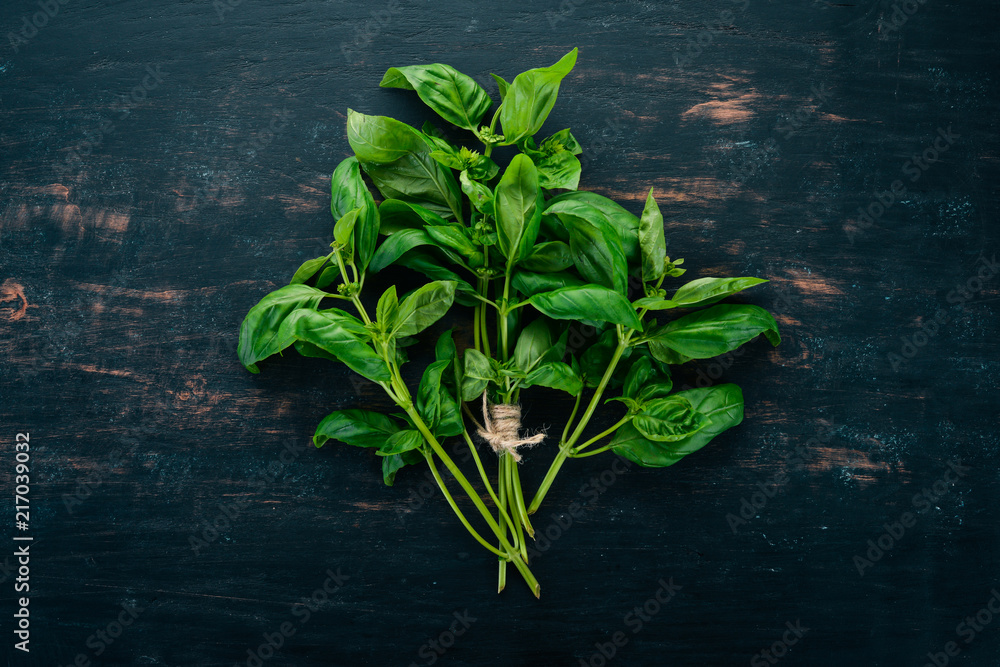 Fototapety, obrazy: Fresh green basil. Top view. On the background. Free space for text.