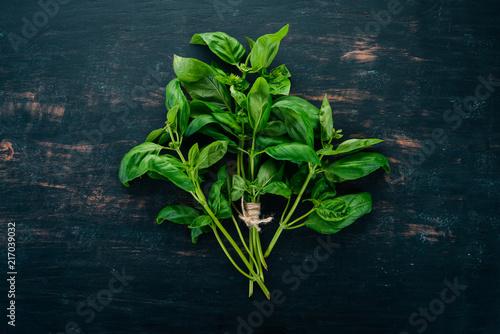 Fotografía  Fresh green basil