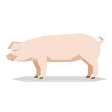 Flat Geometric Yorkshire Pig
