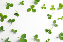 Green Clover Leaves On White Background, Flat Lay Composition With Space For Text
