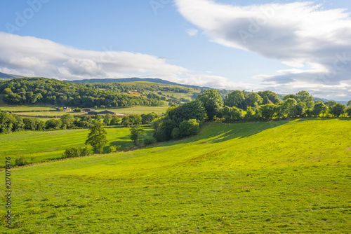 Tuinposter Heuvel Hilly scenic landscape near Killarney in Ireland in summer