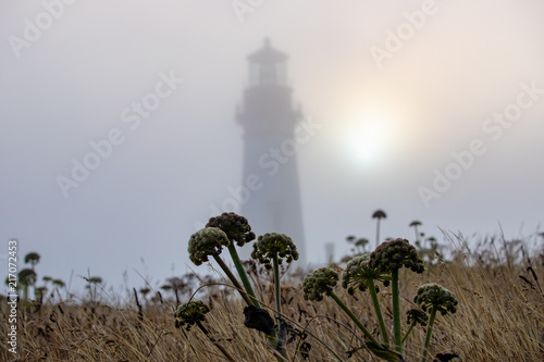 Fotografie, Obraz  Foggy sunset at Yaquina Head Lighthouse along the Oregon coastline in the Pacifi