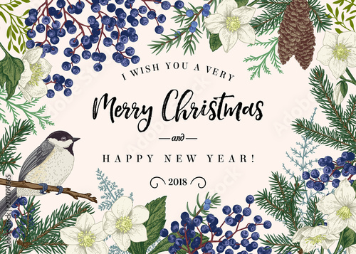 Fototapeta Christmas card with bird. obraz