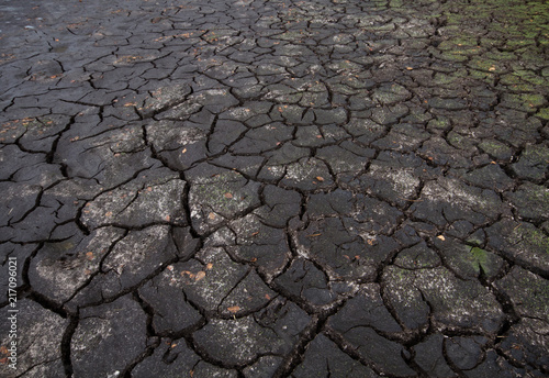 Climate change and global warming: heat and drought causing cracked soil