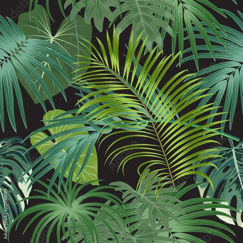 tropikalnej-rosliny-tropikalni-liscie-drzewko-palmowe