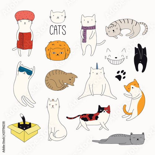 Printed kitchen splashbacks Illustrations Set of cute funny color doodles of different cats. Isolated objects on white background. Hand drawn vector illustration. Line drawing. Design concept for poster, t-shirt, fashion print.