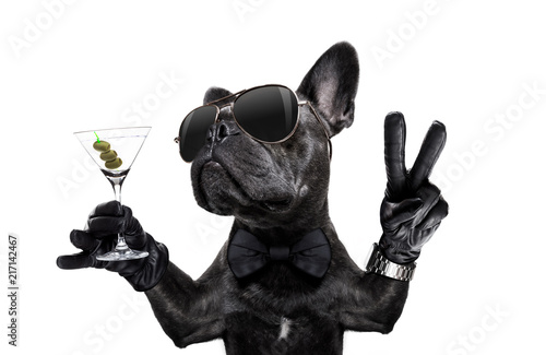 Aluminium Prints Crazy dog peace cocktail dog