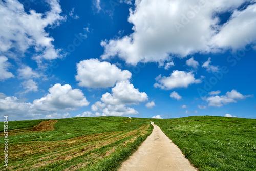 Fotografie, Obraz 서산 운산목장의 뭉게구름과 초원