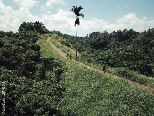 Spoed Foto op Canvas Khaki indonesia bali, ubud, gili meno, island, sea, rice terraces, tourism, earthquake, disaster in Indanesia