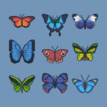 Pixel Art Vector Set Of Different Butterflies And Moth.