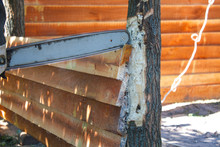 Chainsaw Cutting Wood On Building Site Of Outdoor Shack