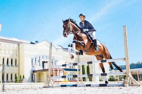 Photo  Hurdling horse