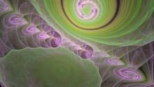 Organische Gebilde - Rosa Und Grün