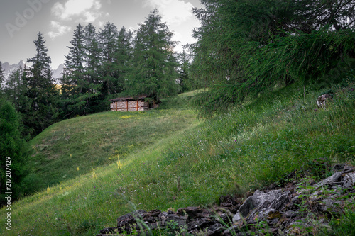 Spoed Foto op Canvas Khaki Cabin in alps forest mountain
