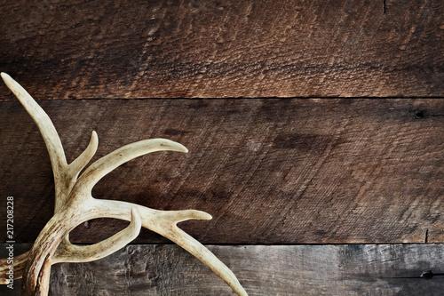 Acrylic Prints Hunting Deer Antlers