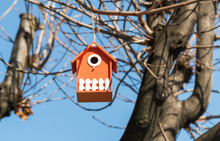 Orange Wooden Bird House In A Tree In The Park.
