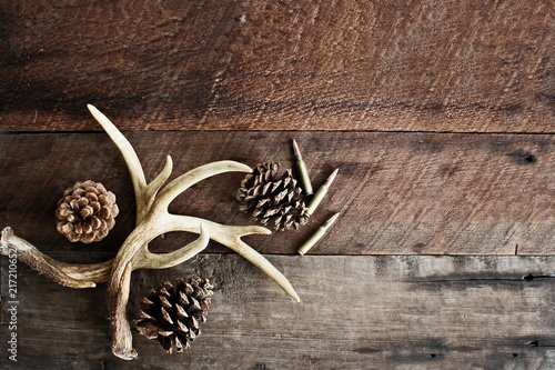 Aluminium Prints Hunting Real white tail deer antlers used by hunters when hunting to rattle in other large bucks over a rustic wooden table with pine cones and .308 rifle shells. Free space for text.