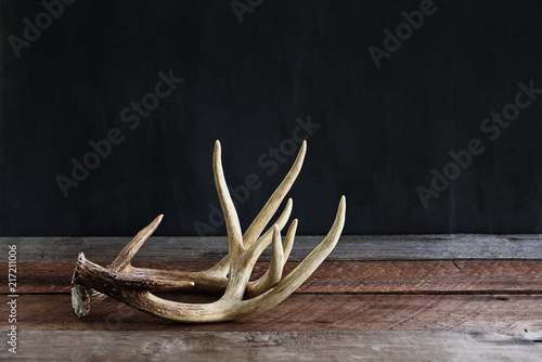 Garden Poster Hunting Pair of Deer Antlers