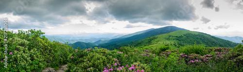 Valokuva  Panorama of Round Bald As Seen from Jane Bald