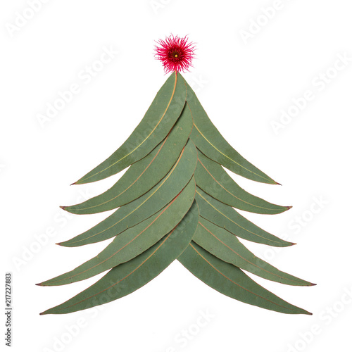 Photo An Aussie Christmas tree made up of Australian gum tree leaves with a small red