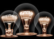 Light Bulbs Concept