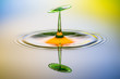 Leinwandbild Motiv Spiegelung von Wassertropfen