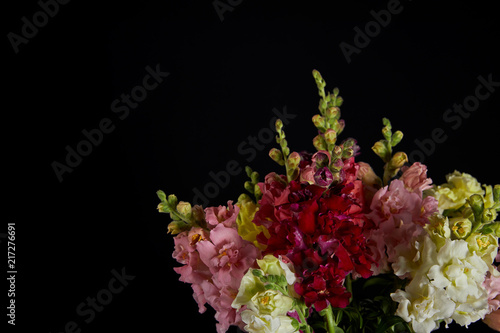 Fotomural bouquet of beautiful various decorative gladioli flowers with buds isolated on b