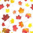 Autumn yellow, orange and red maple leaves isolated on white background, top view, flat layout. Creative seamless pattern. Autumn background.