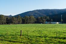 Lush Green Meadow Of A Farm Outside Marysville In Australia.