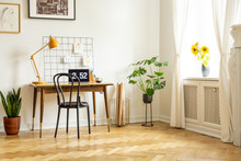 Spacious Home Office Interior With A Desk, Chair, Yellow Lamp, Plant And Sunflowers. Real Photo