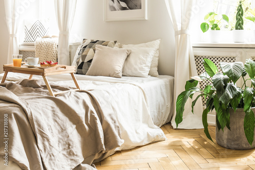 Breakfast tray on a comfy bed with beige sheets and pillows in a serene, sunlit hotel bedroom interior with plants and hardwood herringbone floor