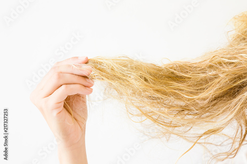Fotografie, Obraz  Woman's hand holding wet, blonde, tangled hair after washing on the white background