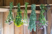 Fresh Herbs Hang And  Dry