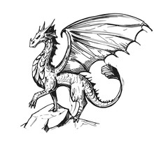 Sketch Of A Dragon