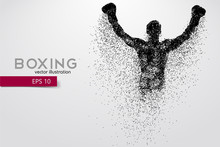 Boxing Silhouette. Boxing. Vec...