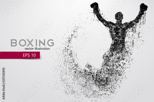 Photo  Boxing silhouette. Boxing. Vector illustration