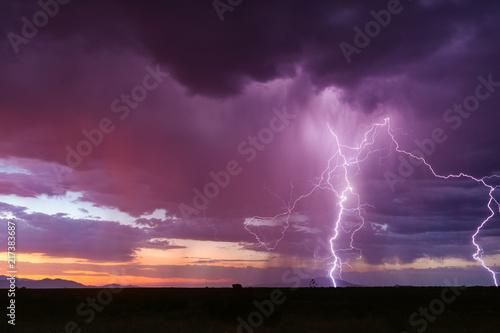 Fotografie, Obraz  Lightning and thunderstorm at sunset