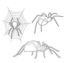 Insect Set Cute Spider Cartoon...