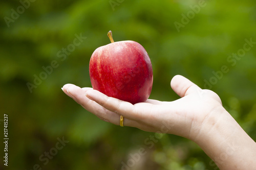 Tablou Canvas The hand of a woman holding a apple fruit in the hand with green nature background