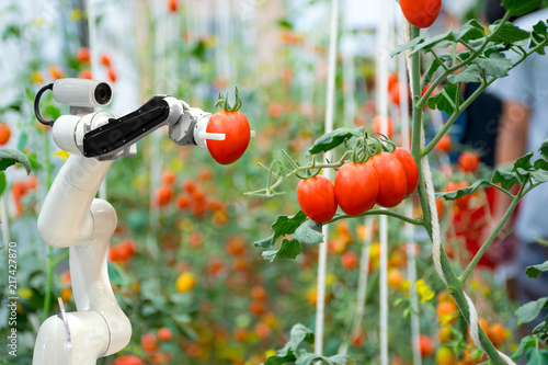 smart robotic farmers in agriculture futuristic robot automation to work to spra Wallpaper Mural