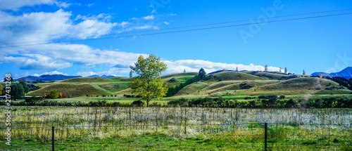 Fotobehang Olijf Mountain scenery of New Zealand