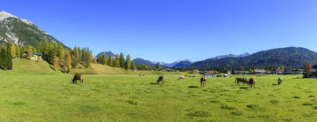 idyllischer Herbsttag nahe Leutasch in Tirol