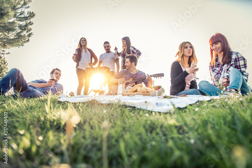 Friends doing picnic and grilling outdoors Canvas Print