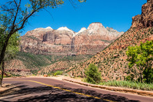 Zion National Park, Utah, USA....