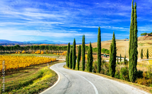 Foto  Classic Tuscany landscapes - rolling hills and cypress trees