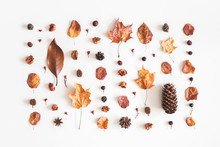 Autumn Composition. Pattern Made Of Flowers, Dried Leaves On White Background. Autumn, Fall Concept. Flat Lay, Top View