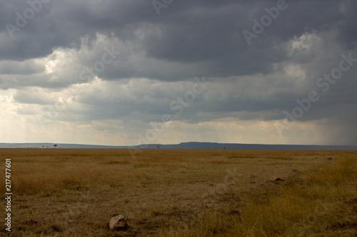 Foto op Plexiglas Afrika African Rains