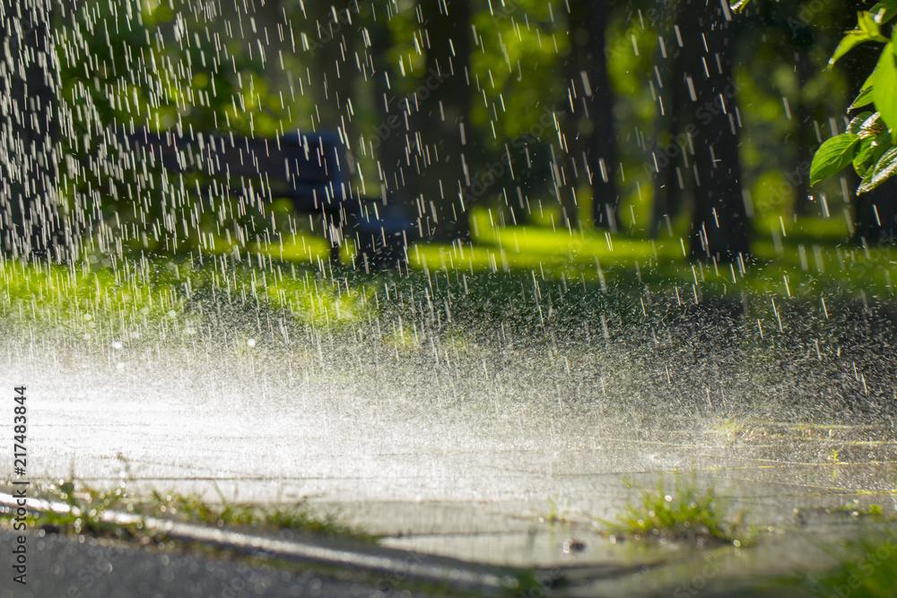 Drops of warm summer rain, falling on the asphalt