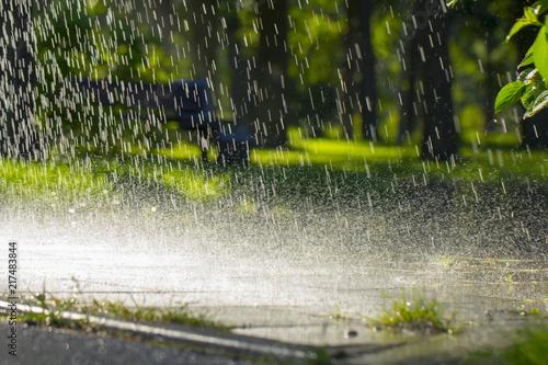 Fotografía Drops of warm summer rain, falling on the asphalt